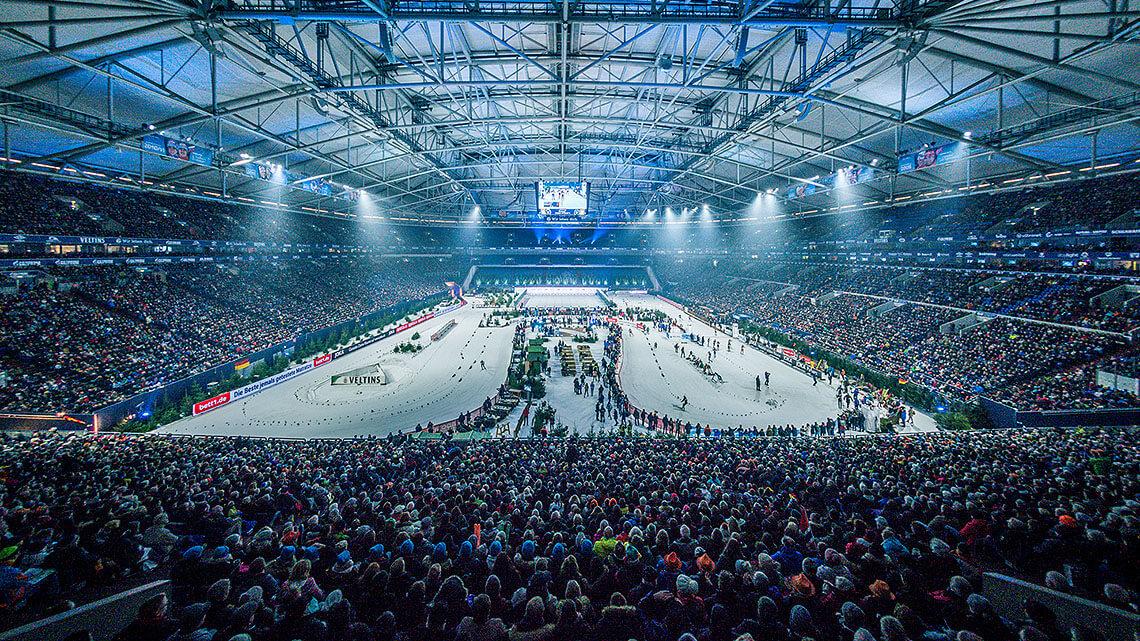 Umfrage Biathlon Schalke 2018